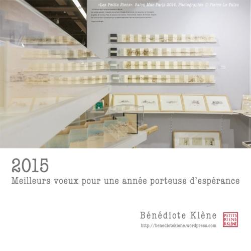 CARTE DE VOEUX 2015 WEB